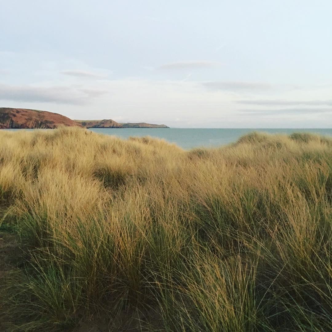 Soft wintery light in the dunes this evening #wintersunshine #sanddunes #wandering