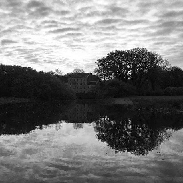 High tide reflections… #paddleboarding #riveradventures #springhightide