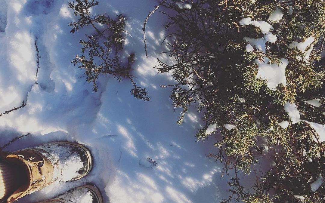 Snowy walks in the Dolomites #sorels @sorelfootwear #dolomites #dolomiti #winterwalks